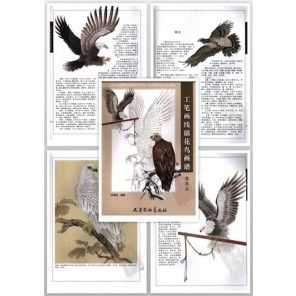 Tattoo Flash Book - Meticulous Line Drawing Birds Pattern Book - Eagle