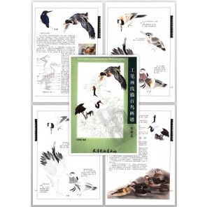 Tattoo Flash Book - Meticulous Line Drawing Birds Pattern Book - Water Birds